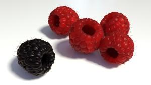 berries-1200533_640
